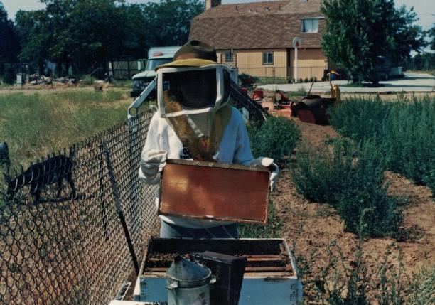 Tasha bees high