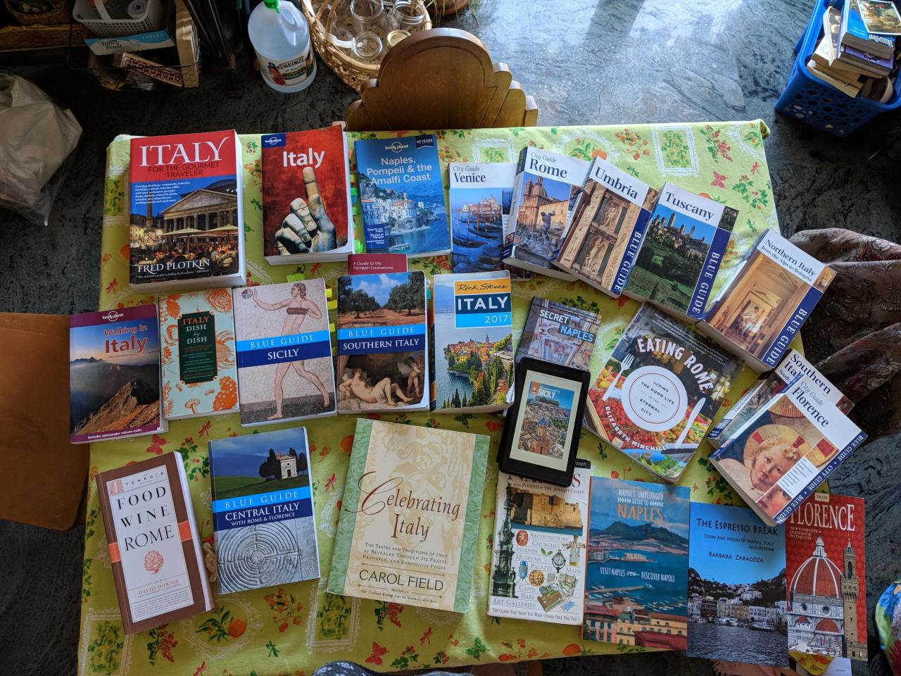 Which Travel Guide Book is best for you?